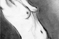 Nude 2 by Erin Leigh