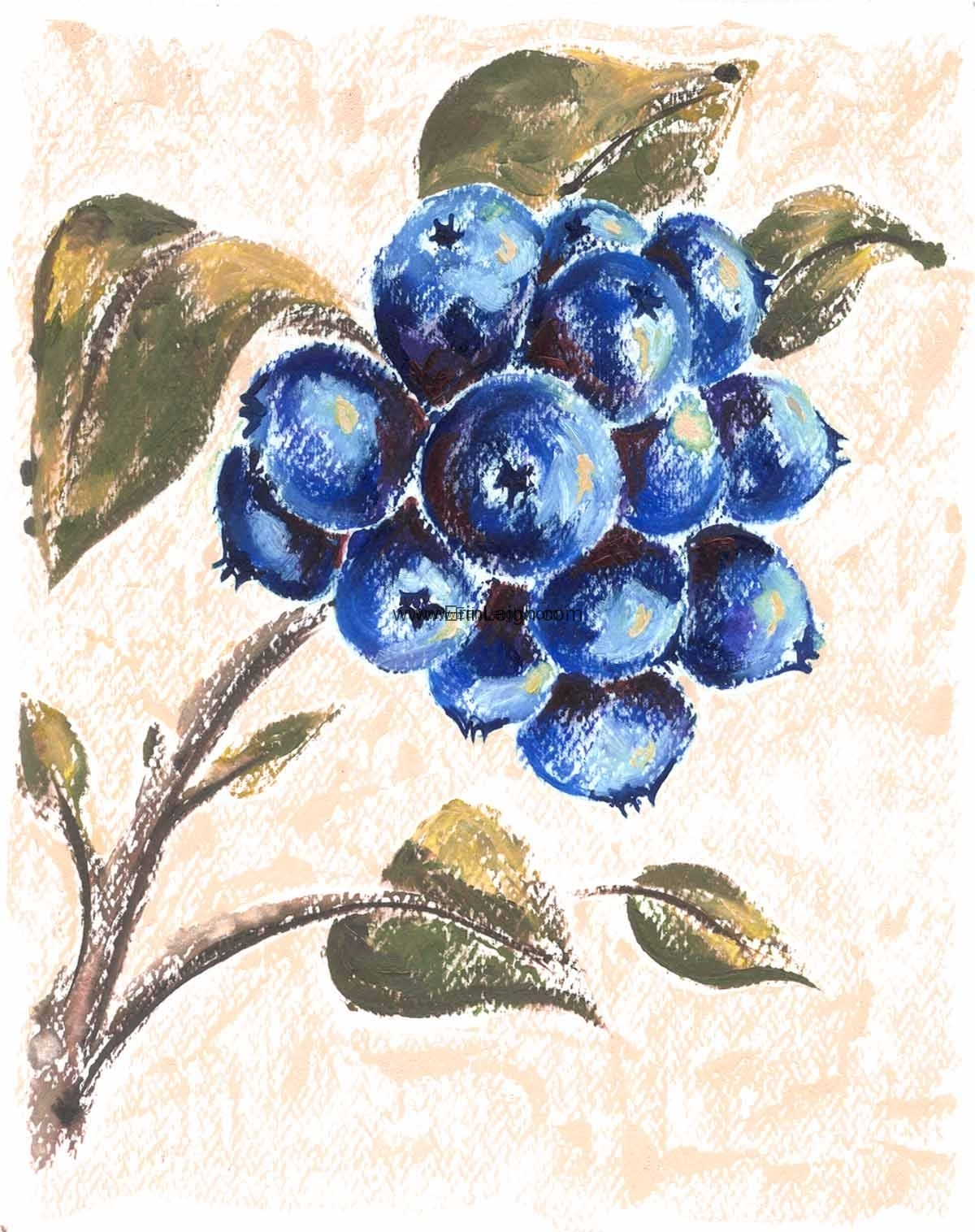 Blueberries by Erin Leigh